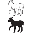 lamb contour vector image vector image