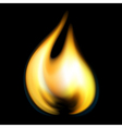 fire flame vector image vector image