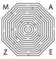 Octagon maze vector image