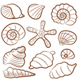 outline seashell set vector image
