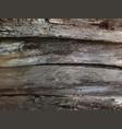 vintage wooden texture vector image
