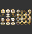 luxury gold and silver design badges abd labels vector image vector image
