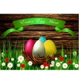 Easter egg nest with Wood texture vector image