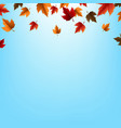 autumn border with leaves vector image