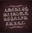hand drawn alphabet letters handwritten vector image vector image