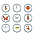 Insect icons set vector image vector image