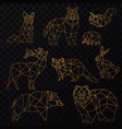 low poly cgolden line animals set origami vector image