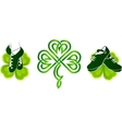 Irish dancing shoes on green clovers vector image