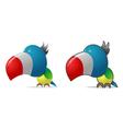 Color parrot vector image