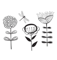 decorative flower and dragonfly vector image