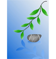 Wet pebble stone and green leafs vector image