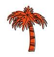 palm tree icon image vector image