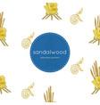 sandalwood flower for king seamless pattern vector image