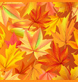 seamless pattern with autumn yellow leaves aging vector image