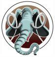 elephant head vector image