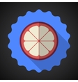 Mangosteen Fruit Flat Icon with long shadow vector image