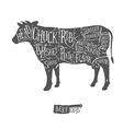 Vintage butcher cuts of beef scheme vector image