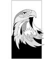 sketch eagle head vector image