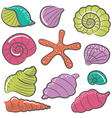 colorful seashell set vector image vector image