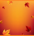 autumn poster with leaves vector image