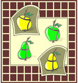 apples and pears vector image vector image