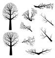 Bare trees silhouette vector image