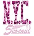 New York City fifth avenue vector image