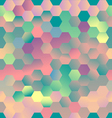 Colorful Pentagons vector image