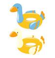 swim rings shape of duck vector image