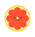 grapefruit icon flat vector image