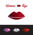 polygonal lips triangle logo or icon vector image