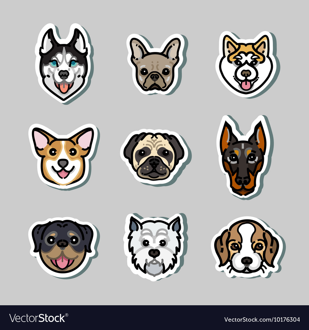 Dogs dog breeds vector
