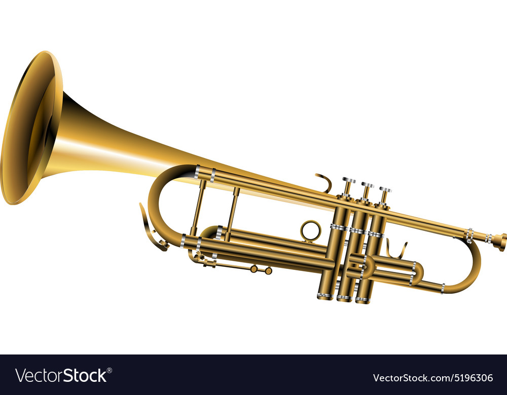 Trumpet one isolated object vector