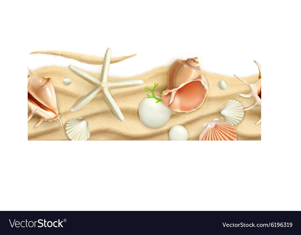 Seashells on sand seamless background vector