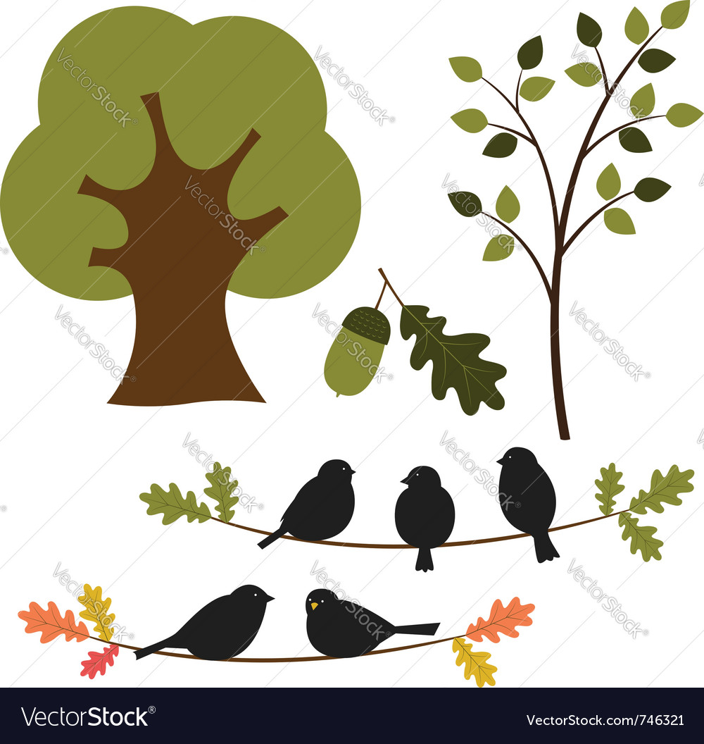 Trees and birds vector