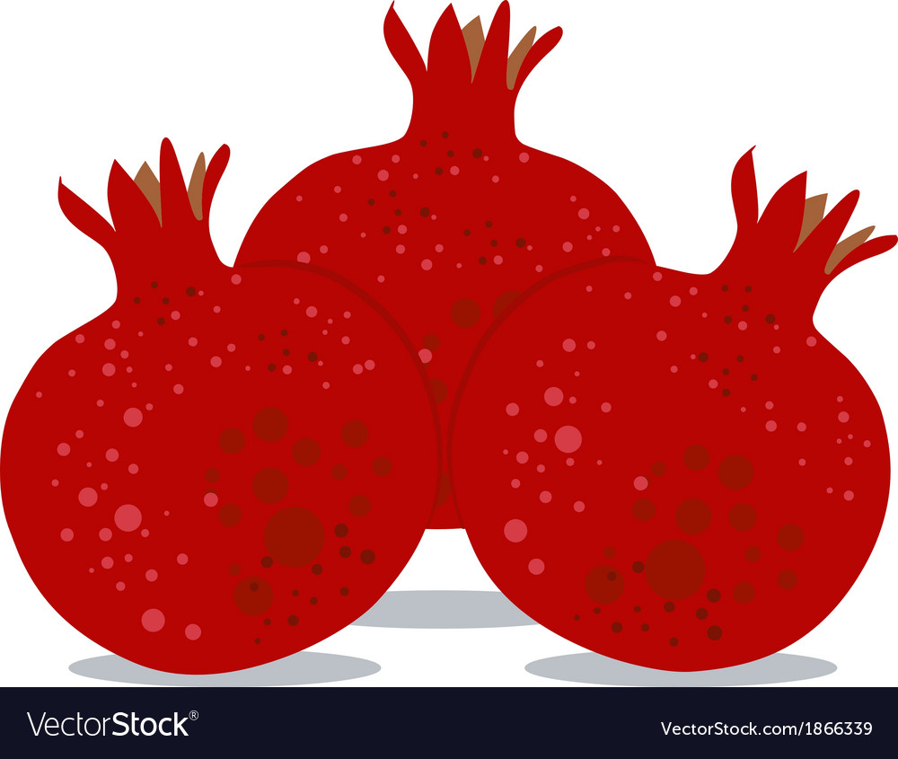 Pomegranates for rosh hashanah 2 vector