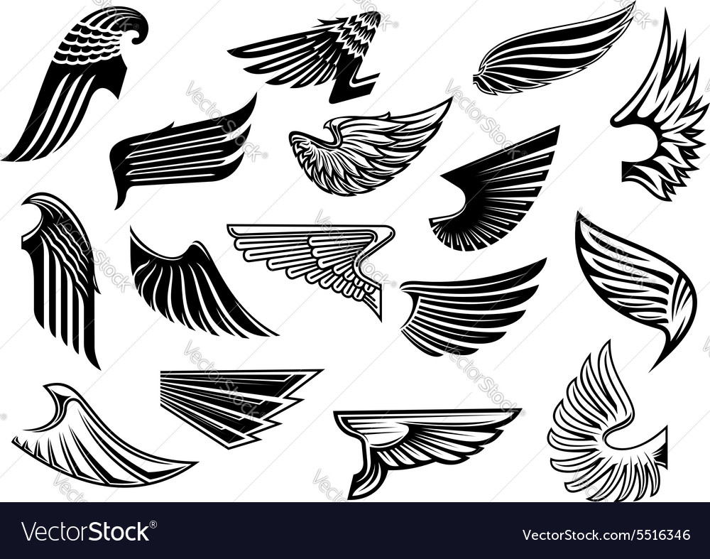 Vintage isolated heraldic wings set vector