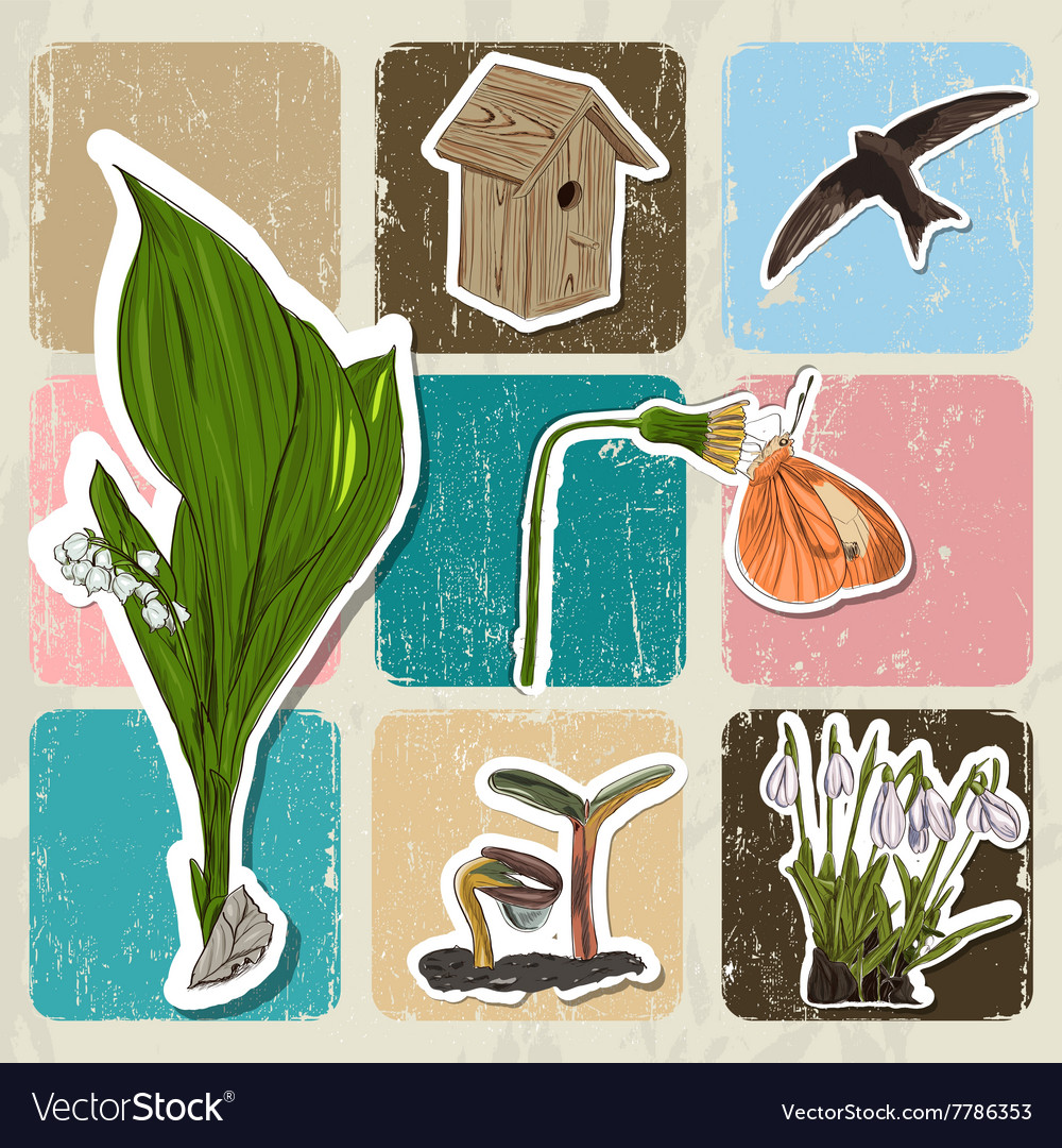 Poster with spring elements fiowers birds vector