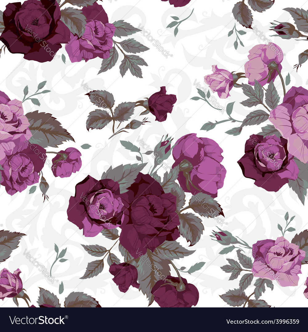 Seamless floral pattern with purple roses on white vector