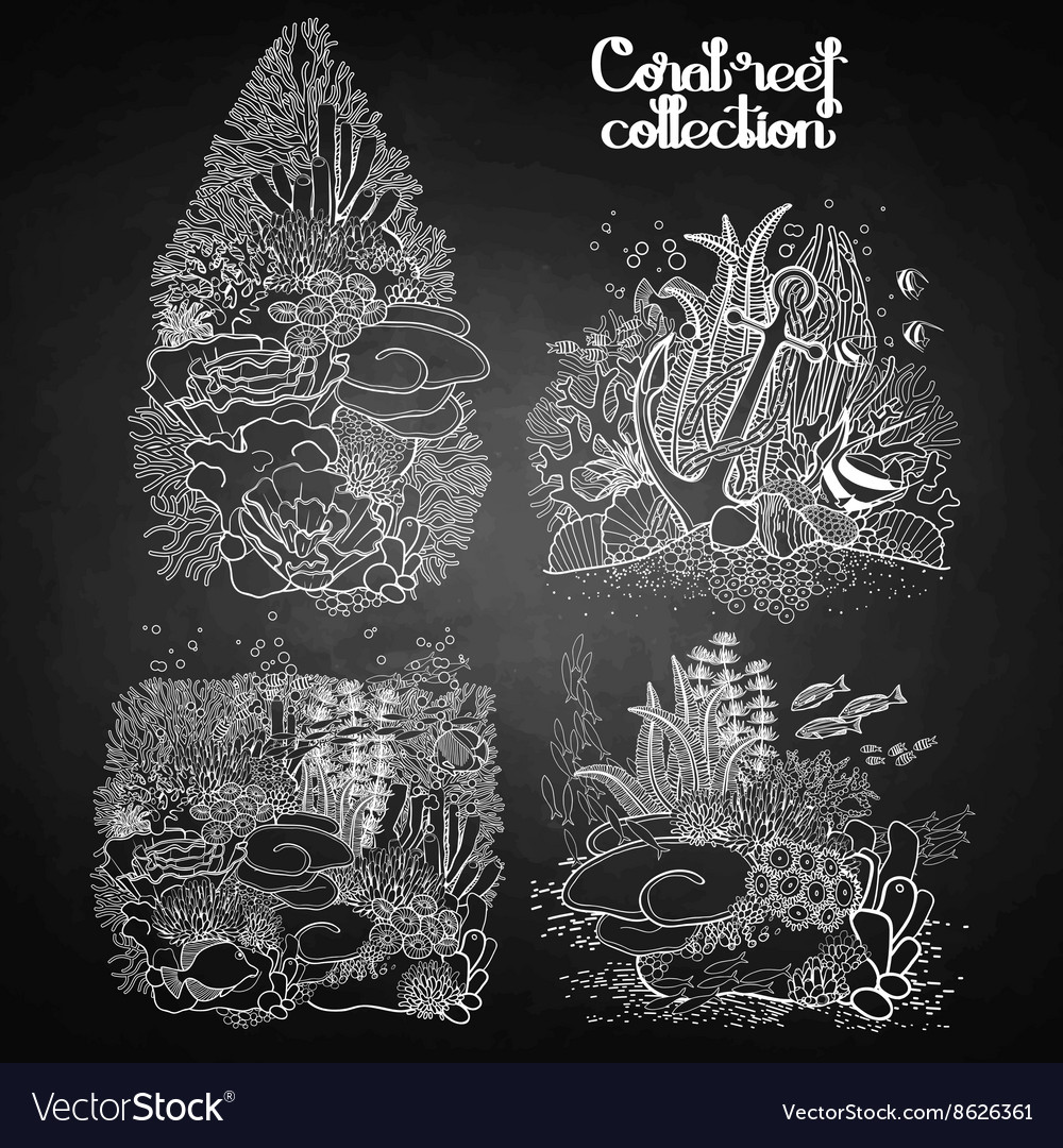 Graphic coral reef collection vector