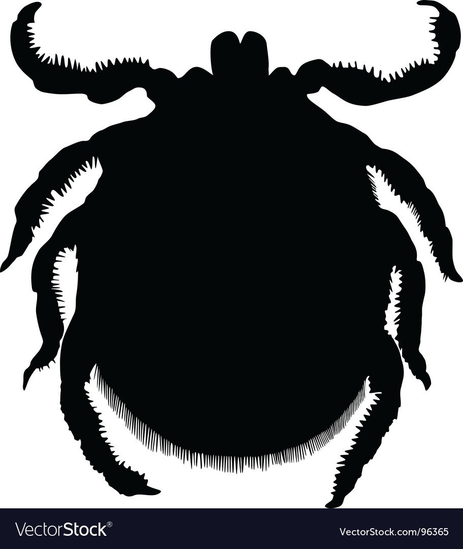 Silhouette of a tick vector