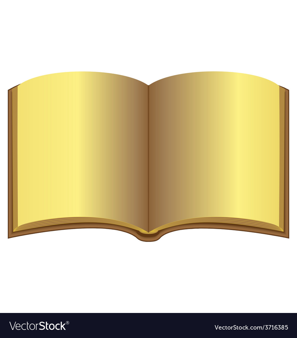 Golden open book vector