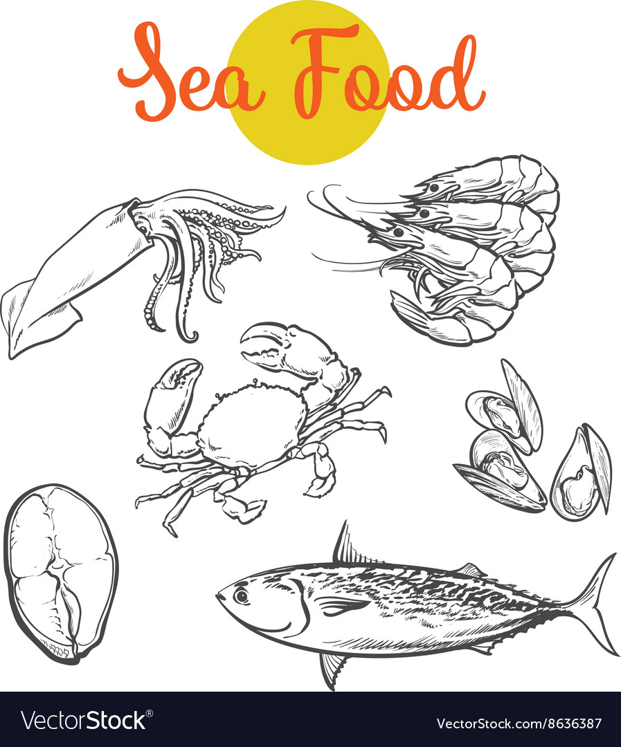 Isolated set of fresh marine products vector