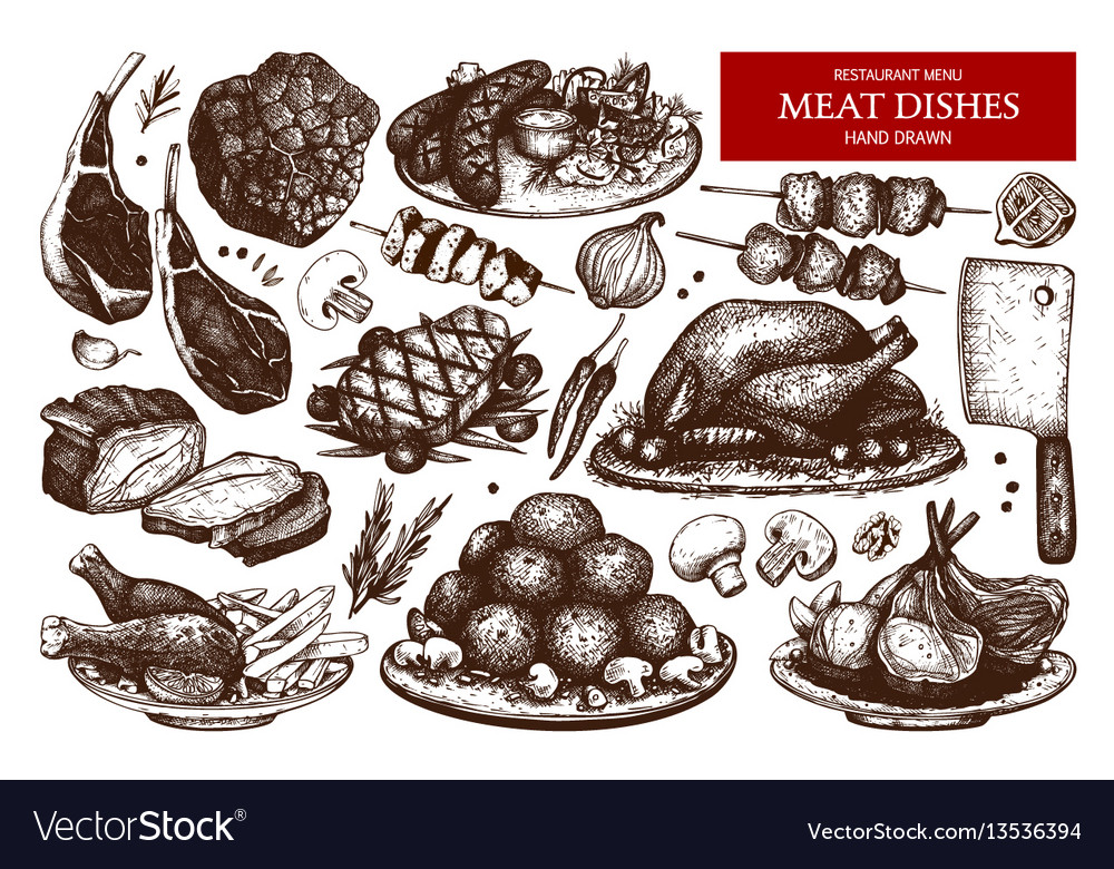 Collection of hand drawn meat vector