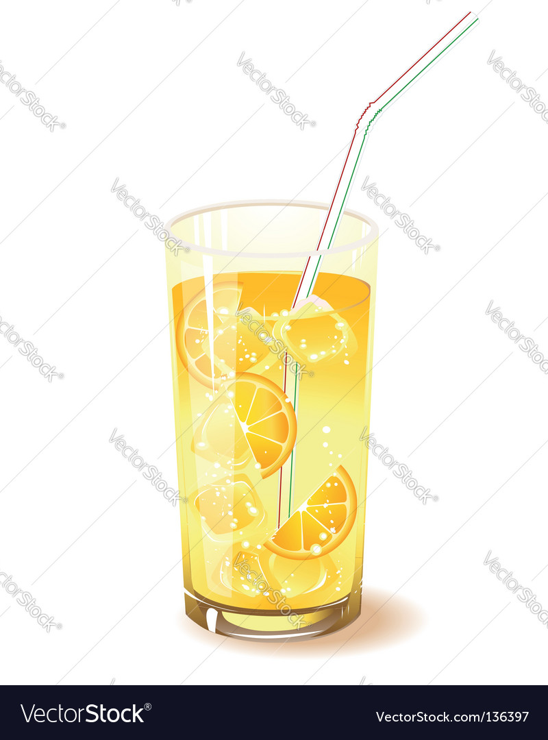 Fruit drink vector