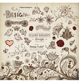 Hand Drawn Floral Ornaments vector image