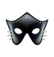 Black leather eyes mask isolated vector image vector image