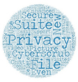 CyberScrub Privacy Suite Review text background vector image