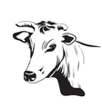 Cow drawing ornament decoration vector image