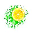 origami lemon slice with watercolor splash vector image